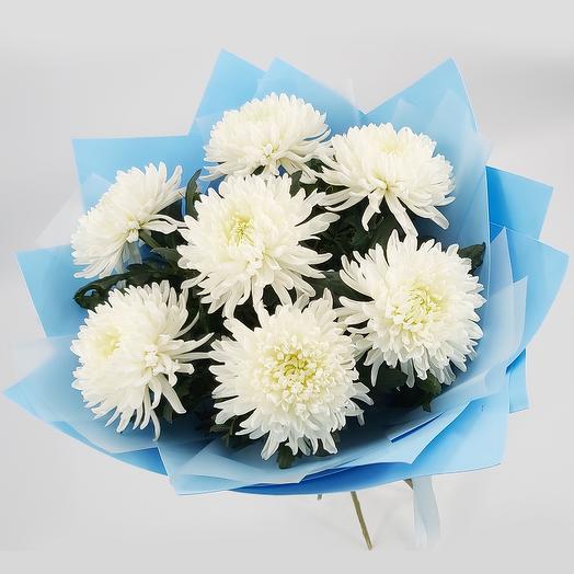 Atmosphere: 7 white chrysanthemums