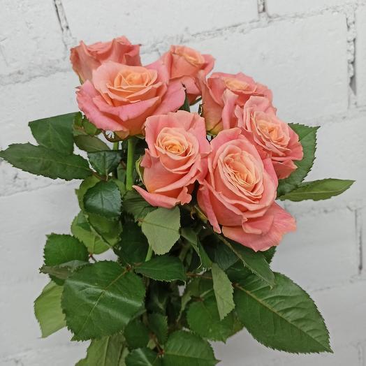 7 роз 70 см: букеты цветов на заказ Flowwow