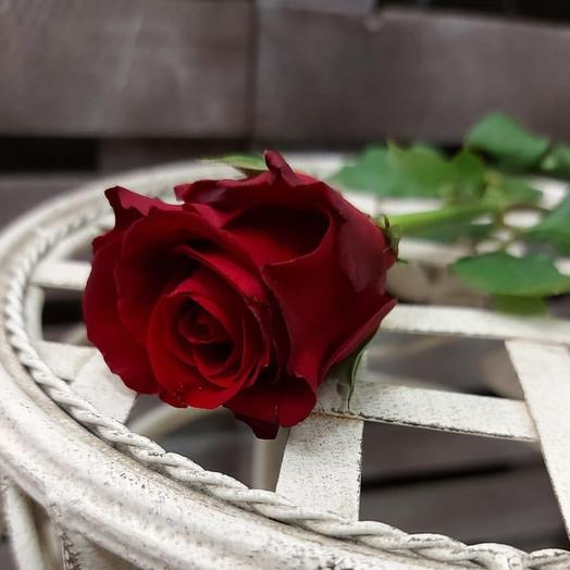 Розы красные 45 см поштучно