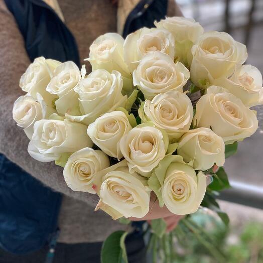 25 Эквадорских Роз Alba