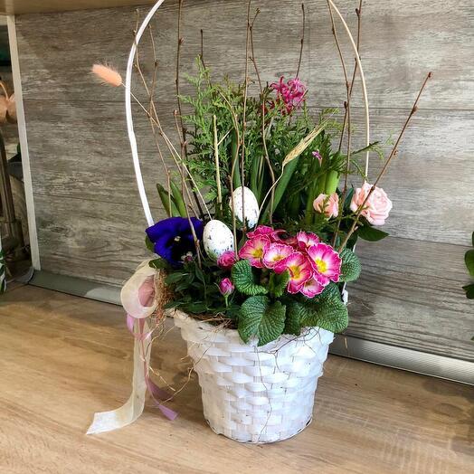 Пасхальная композиция с горшечными цветами