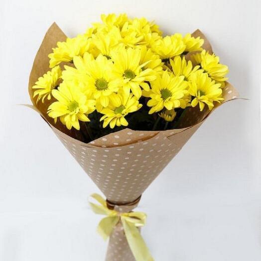 Солнышко 5 хризантем