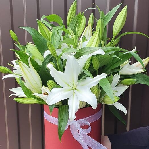 Цветы в коробке «Мисс Лили»