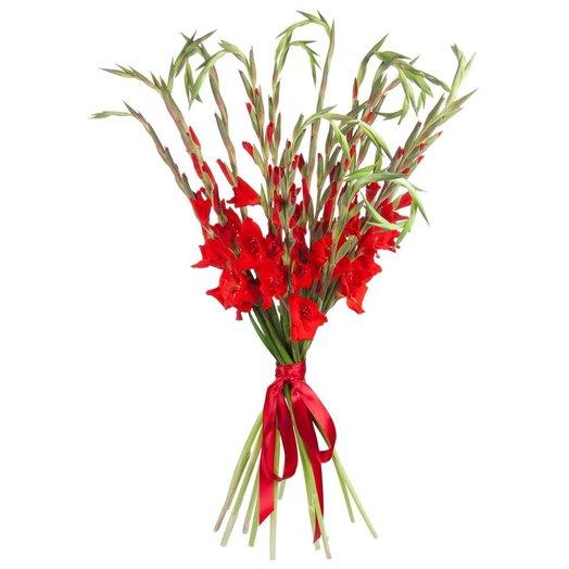 Букет из гладиолусов Скарлетт: букеты цветов на заказ Flowwow