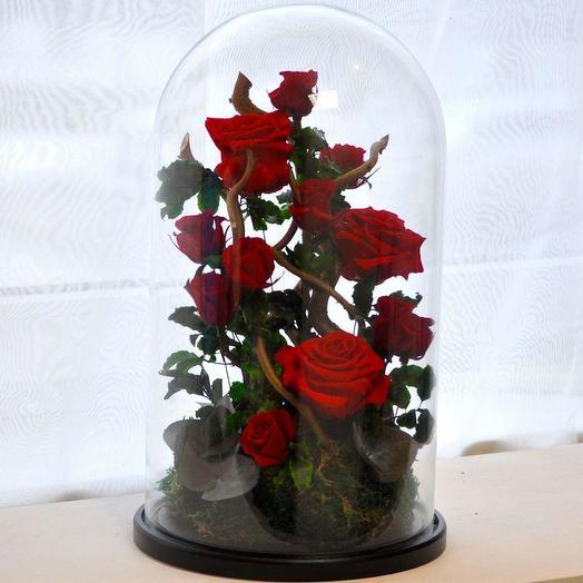 КОМПОЗИЦИЯ «ЛЮБОВЬ, ПОХОЖАЯ НА СОН» - БУТОНЫ РОЗ, МОХ И ДЕКОР: букеты цветов на заказ Flowwow