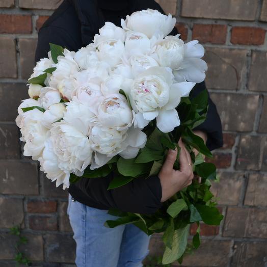 White pearl: букеты цветов на заказ Flowwow