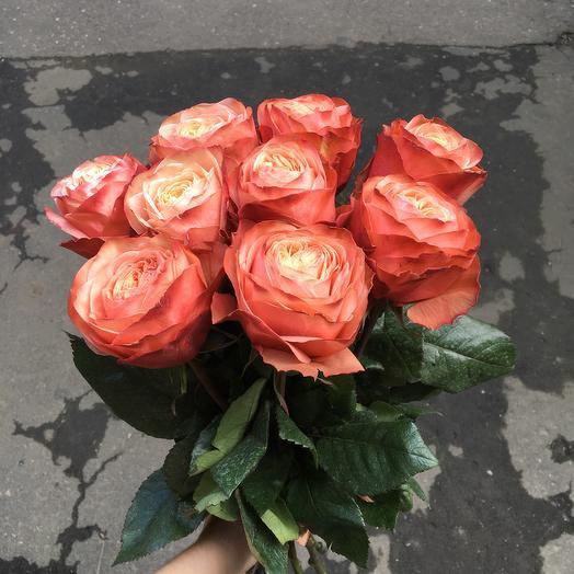 9 роз с пионовидным раскрытием: букеты цветов на заказ Flowwow
