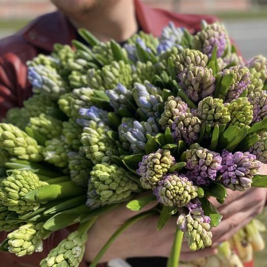 Гиацинт микс: букеты цветов на заказ Flowwow