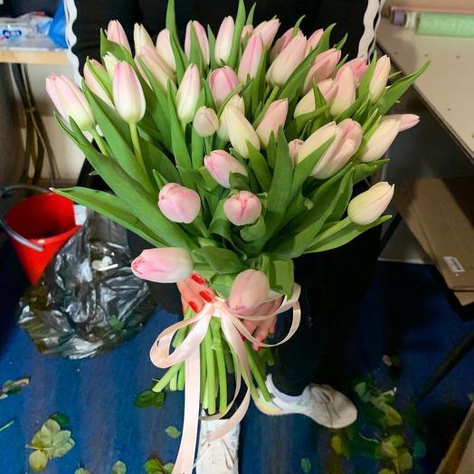 Нежно розовые тюльпаны 51 Шт: букеты цветов на заказ Flowwow