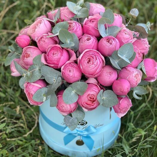 Роза пион Премиум коробке