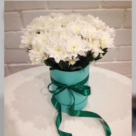 Мятная хризантема: букеты цветов на заказ Flowwow