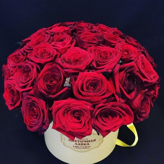 The abundance of 51 roses