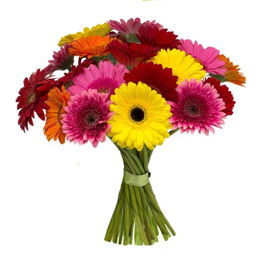 Герберы микс: букеты цветов на заказ Flowwow