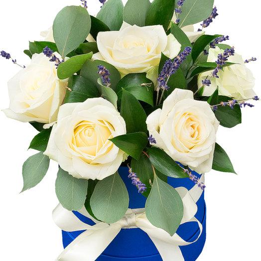 Роза лаванда