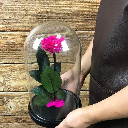 Малиновая роза в колбе: букеты цветов на заказ Flowwow