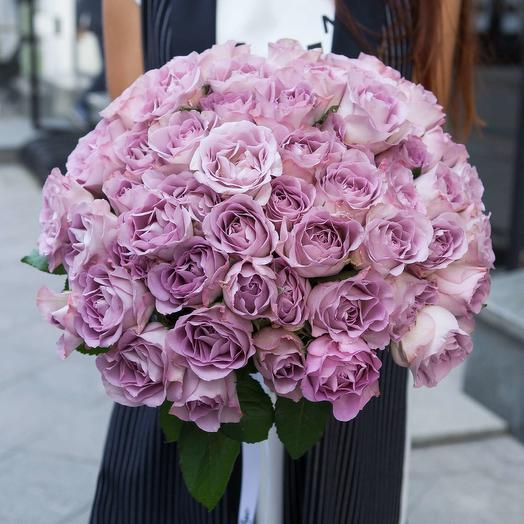 51 пурпурная роза Purple Kenya