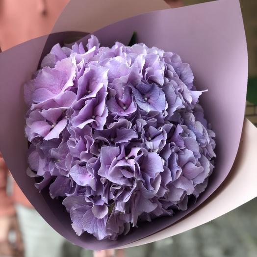 Сиреневое облако: букеты цветов на заказ Flowwow