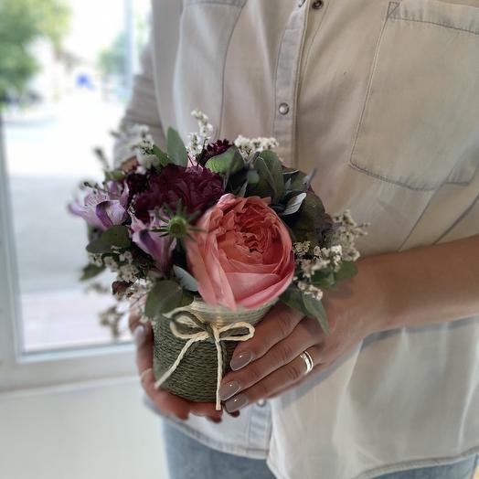 Стаканчик с садовой розой
