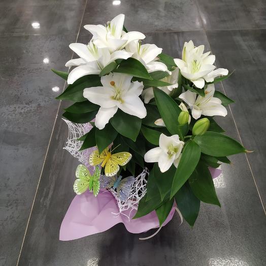"""Белая лилия """"Откровение"""": букеты цветов на заказ Flowwow"""