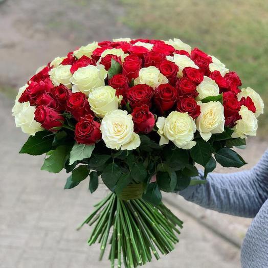 101 Эквадорская Роза ( Красная с белым )