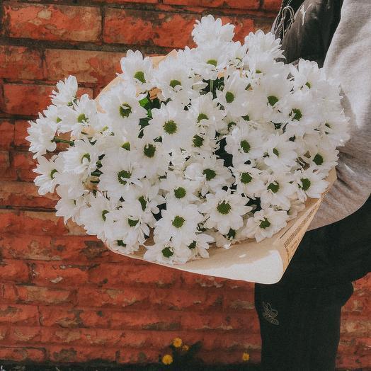 9 хризантем в бумаге крафт