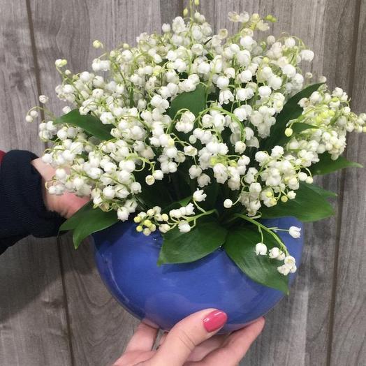 Ландыш в кашпо: букеты цветов на заказ Flowwow