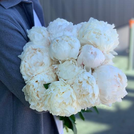 11 White Peonies