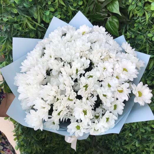 """Bouquet Of Chrysanthemums """" Shine»"""