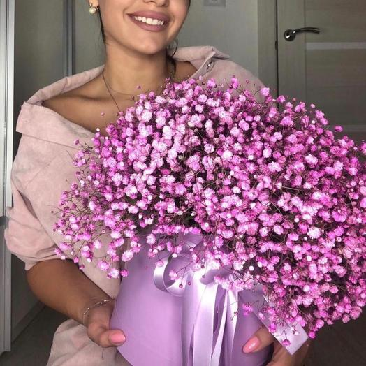 Цветы в коробке 19 шикарных гипсофил «Прекрасная»