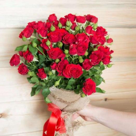 Роза кустовая красная 9