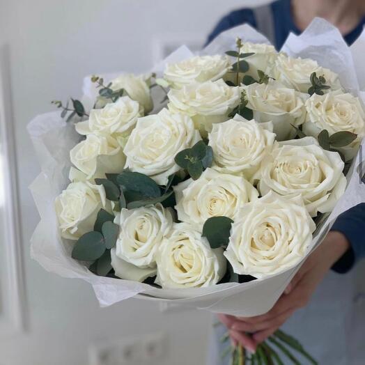 Роза плайя бланка