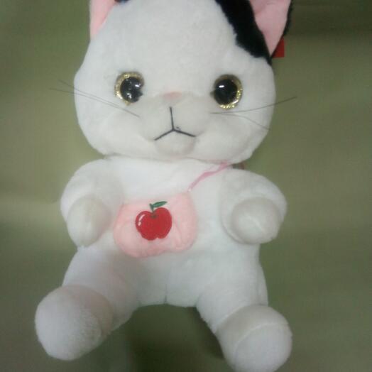 Котик с сумочкой