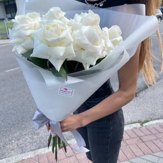 Кубинские розы Vanila