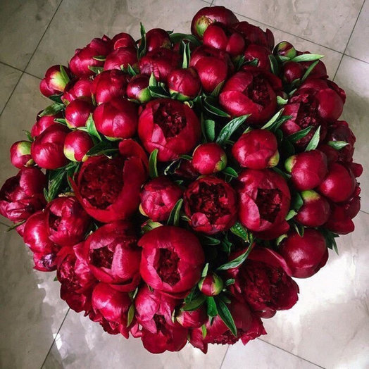 Букет из 33 красных пионов: букеты цветов на заказ Flowwow