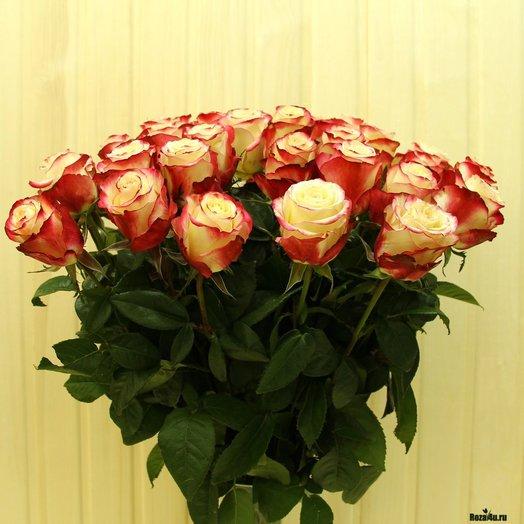 Для принцессы 51 роза: букеты цветов на заказ Flowwow