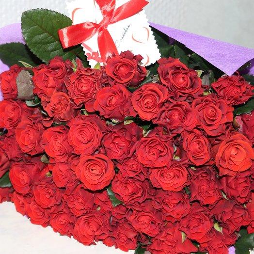 Розы Эльторо