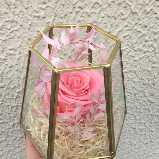 Розовая роза в геометрической вазе: букеты цветов на заказ Flowwow
