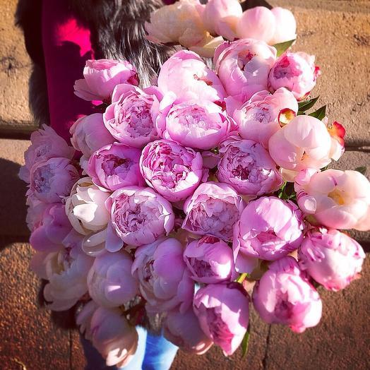 51 пион: букеты цветов на заказ Flowwow
