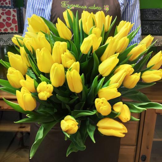 51 yellow Tulip