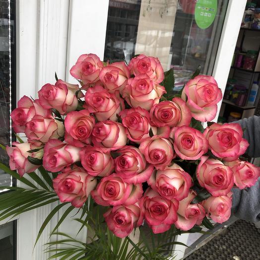 Роза 29