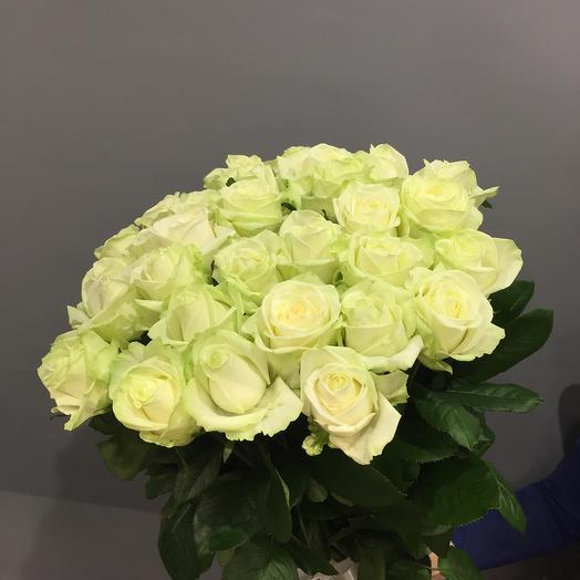 31 роза белая Аваланж  60 см