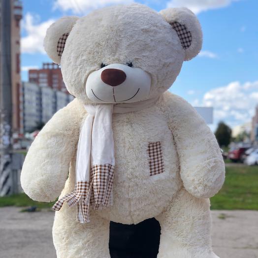Bear 150cm