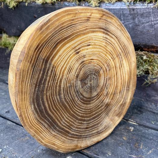 Подставка из дерева. Карагач