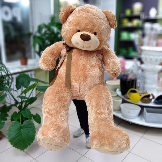 Медведь 180см