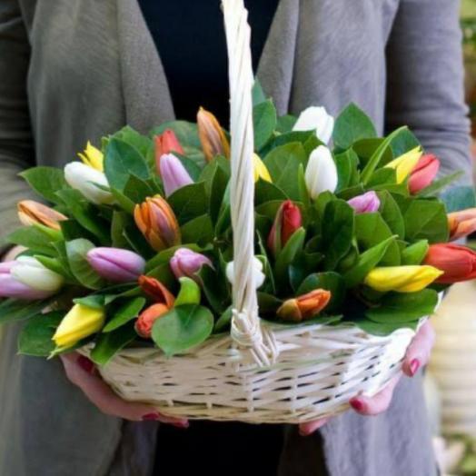 Корзина с тюльпанами 51шт