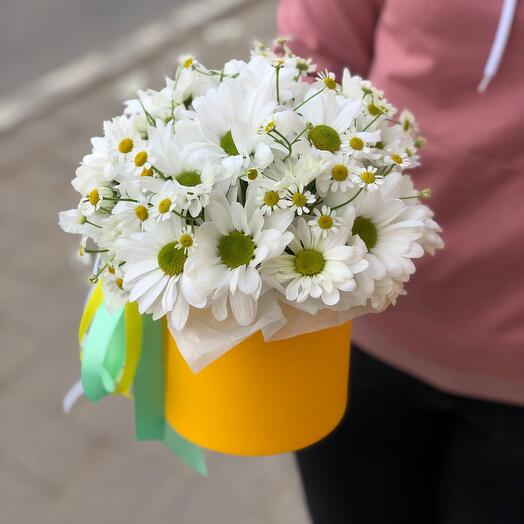 Цветы в коробке «Облако ромашек», размер XS