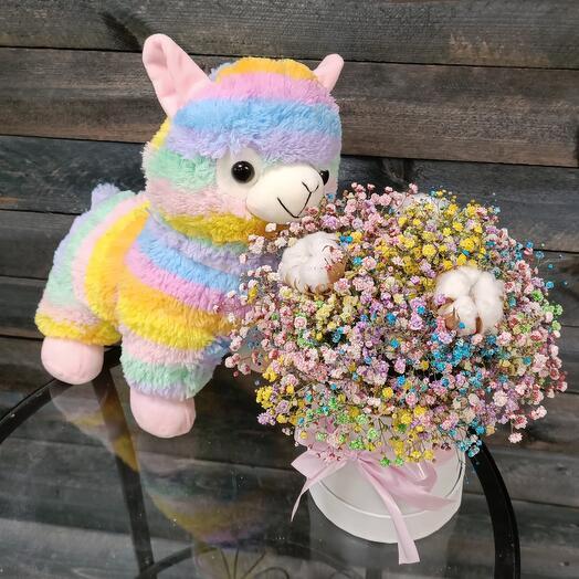 Радужная лама с коробочкой красочных сухоцветов