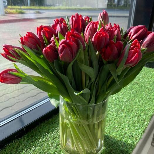 41 пионовидных тюльпана