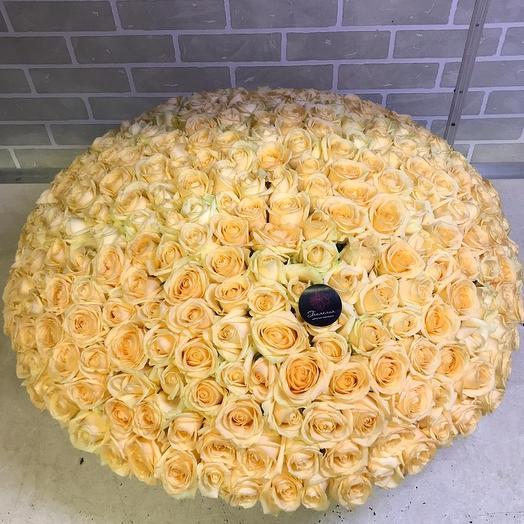 Корзина из 301 розы: букеты цветов на заказ Flowwow