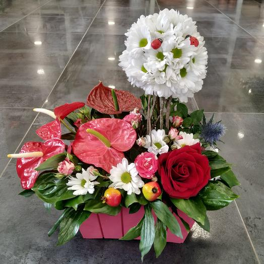 Стильная композиция с антуриумами: букеты цветов на заказ Flowwow